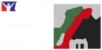 vln iracing logo white