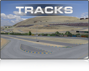 iRacing has precision-mapped every major North American track and a growing number of international circuits.