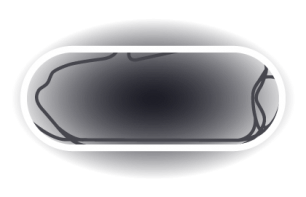 New Hampshire Motor Speedway Track Map